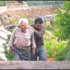 Le Potager de mon grand-père